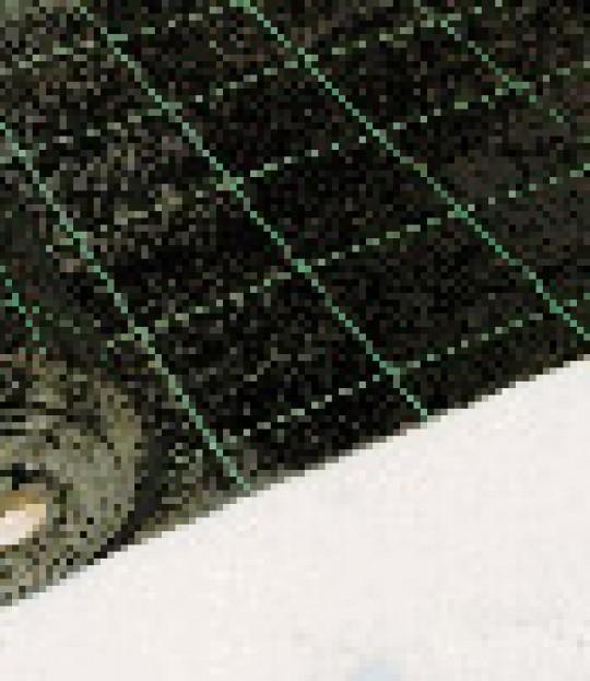 Jorddekkeduk 220cm x 100 meter svart