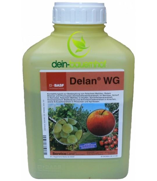 Delan WG - 1 kg