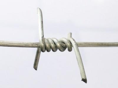 Piggtråd
