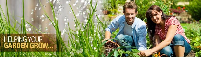 irrigation (1)
